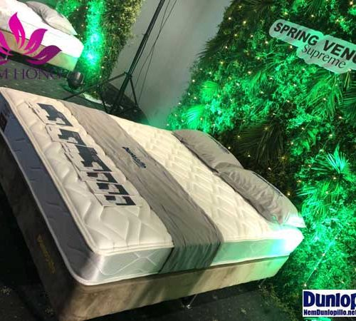 Đệm lò xo Venus Dunlopillo chất lượng cao
