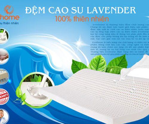 Nệm cao su tự nhiên Everhome Lavender